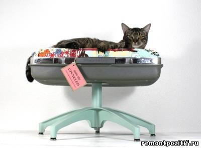 лежанка для кошки из старого чемодана