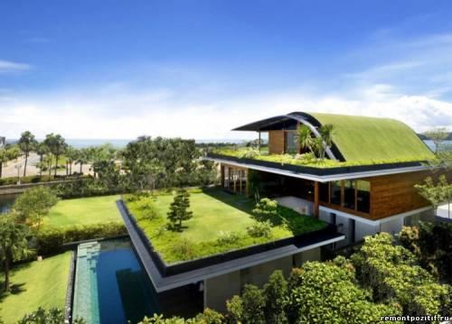газон на крыше загородного дома