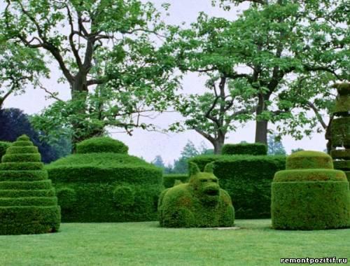 топиари или фигурный сад