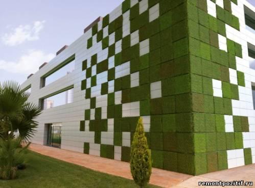 частичное вертикальное озеленение фасадов