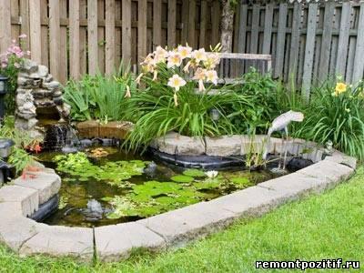 пруд с растениями на участке