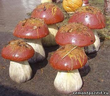 грибы из монтажной пены