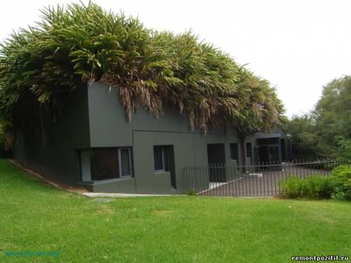зеленая крыша дома