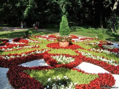 партер из цветов