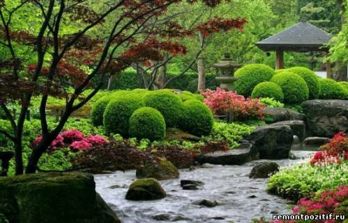 японский сад деревьев своими руками