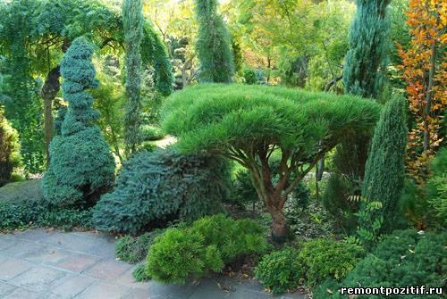 как создать сад деревьев