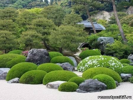 японский сад деревьев