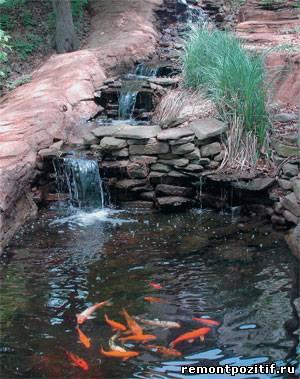 водоем с рыбками на участке