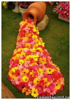 Ландшафтная акутика - цветок