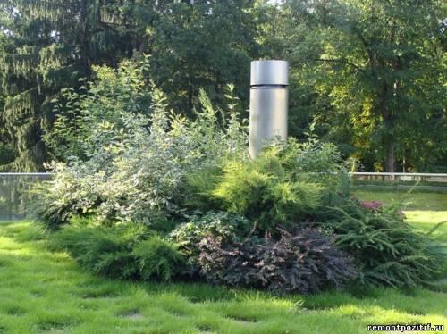 растения для зеленой крыши