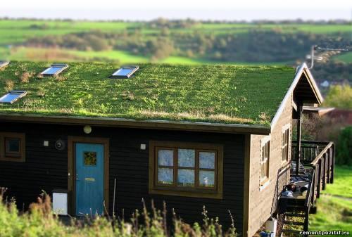 устройство зеленой крыши