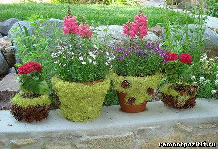 цветочные горшки украшенные мхом и шишками