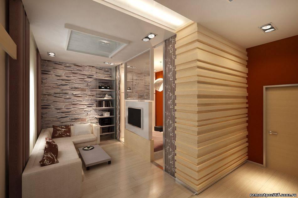 Прихожая и гостиная в одной комнате дизайн