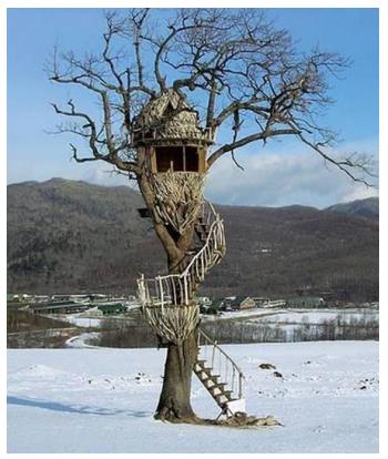 Дома на деревьях – необычные дома для